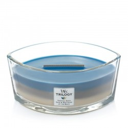 Candle The Country Candle Classic candle box - Capri Blu shop candle