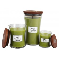 Candle The Country Candle Candle Wonderwick White - Coconut & Mango shop candle