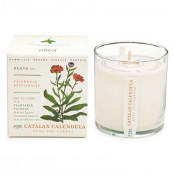 Candle Village Candle Cire - Wild Rose shop candle