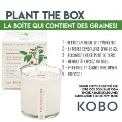 bougie parfumée Village Candle Cire - Sage & celeri Paris