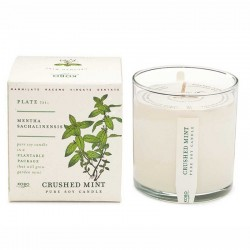 Candle Village Candle Cire - Smoked Birch shop candle