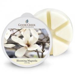 Cire Blooming Magnolia /...