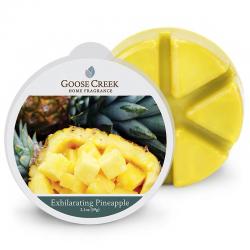 Cire Exhilarating Pineapple...