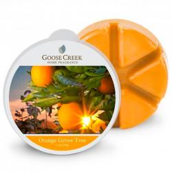 Cire Orange Grove Tree par...