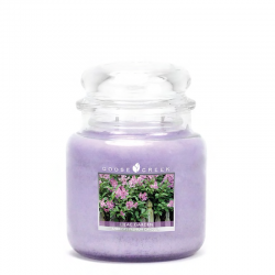 Moyenne Jarre Lilac Garden...