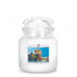 Candle Village Candle Petite Jarre - Crisp Apple shop candle